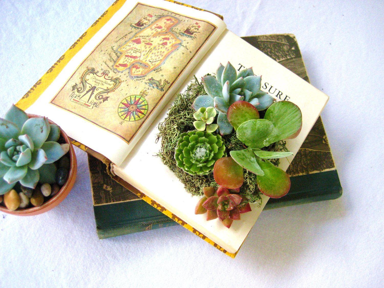 Succulent Centerpiece Vintage Book Planter by RootedInSucculents via Etsy.