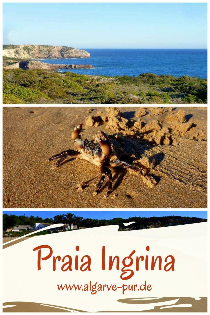 Wandern Algarve Vom Praia Ingrina Zum Praia Furnas Portugal Strand Algarve Wandern