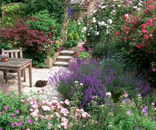 flowers for cottage style gardens english cottage gardens pictures - Google Search | Flowers
