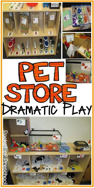 Classroom Pet Ideas ~ Pet store in the dramatic play center pocket of preschool
