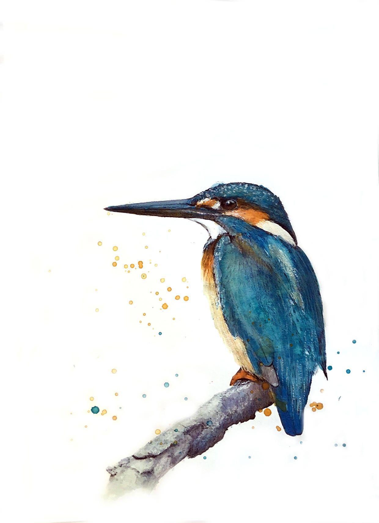Illustration D Un Martin Pêcheur Sur Une Branche Impression
