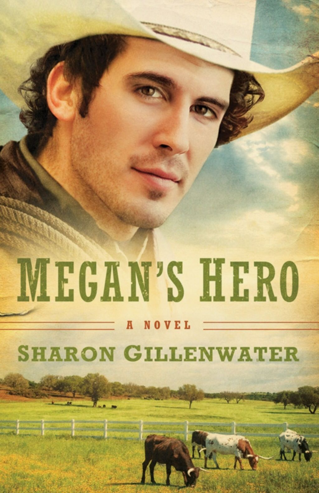 Book #95: Megan's Hero by Sharon Gillenwater | Books I've Read