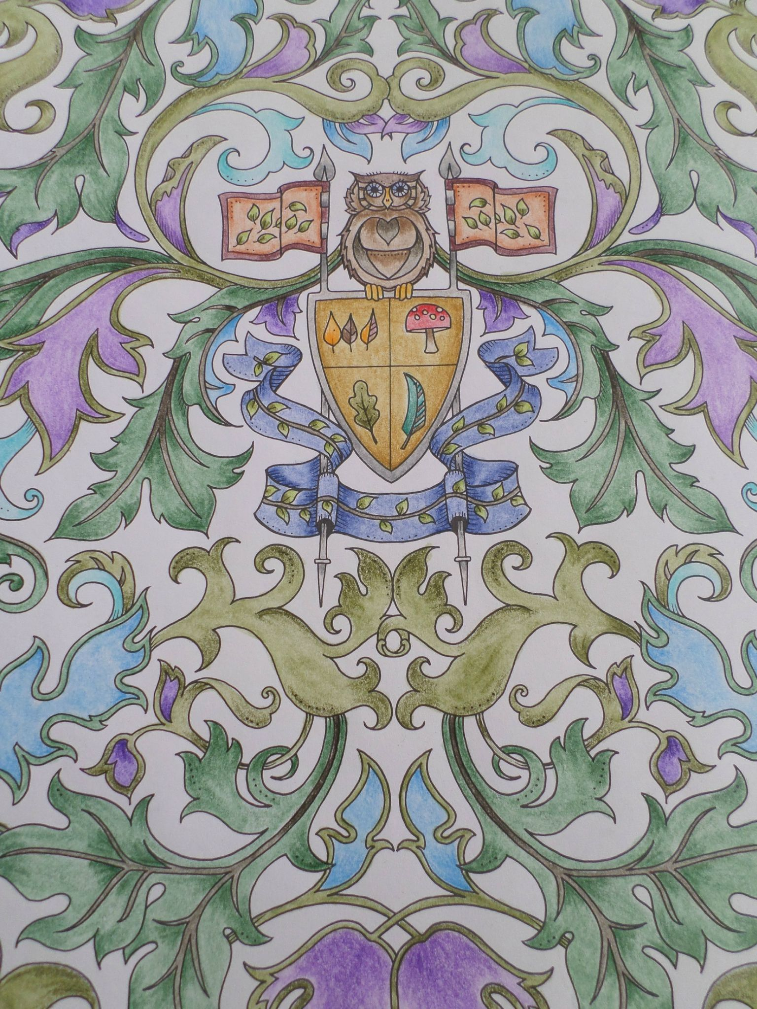 Livre Foret Enchantee Steffy Elsass Crea Coloring Foret