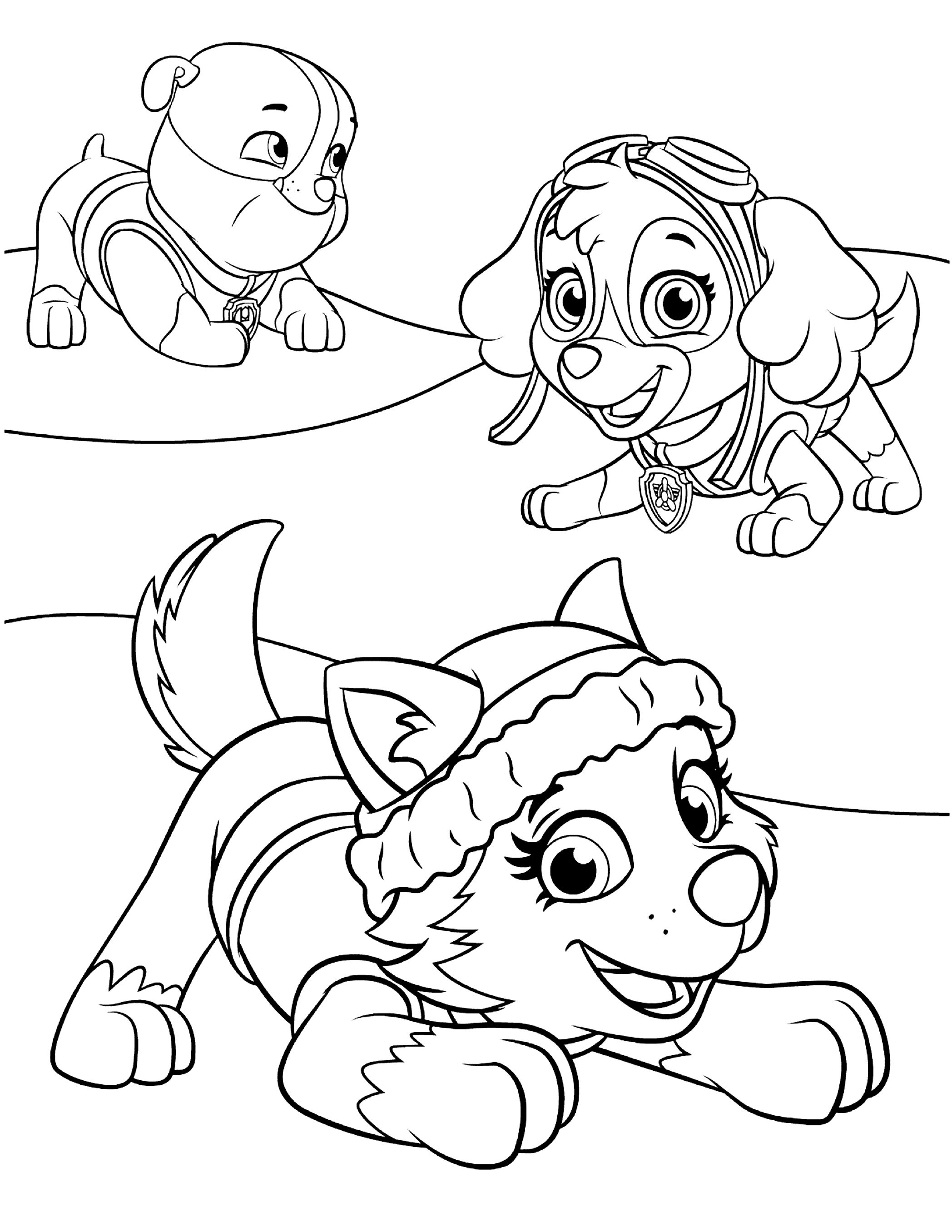 50 paw patrol coloring pages for kids  paw patrol
