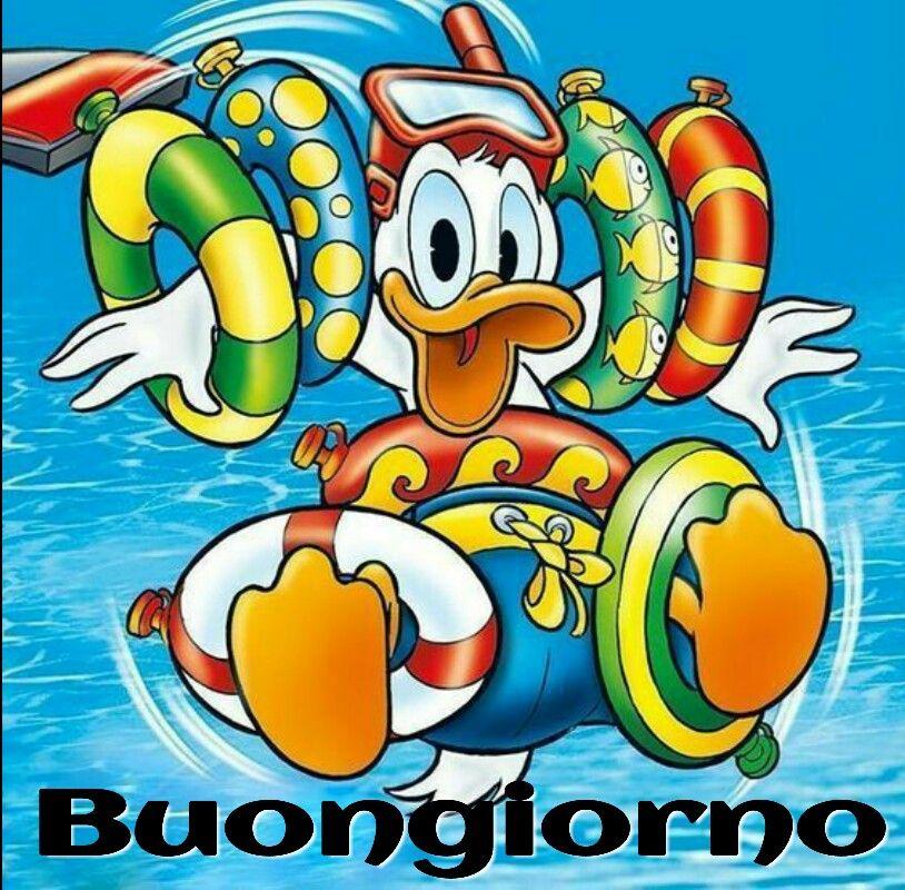 Pin by gian luigi on buongiorno pinterest donald duck