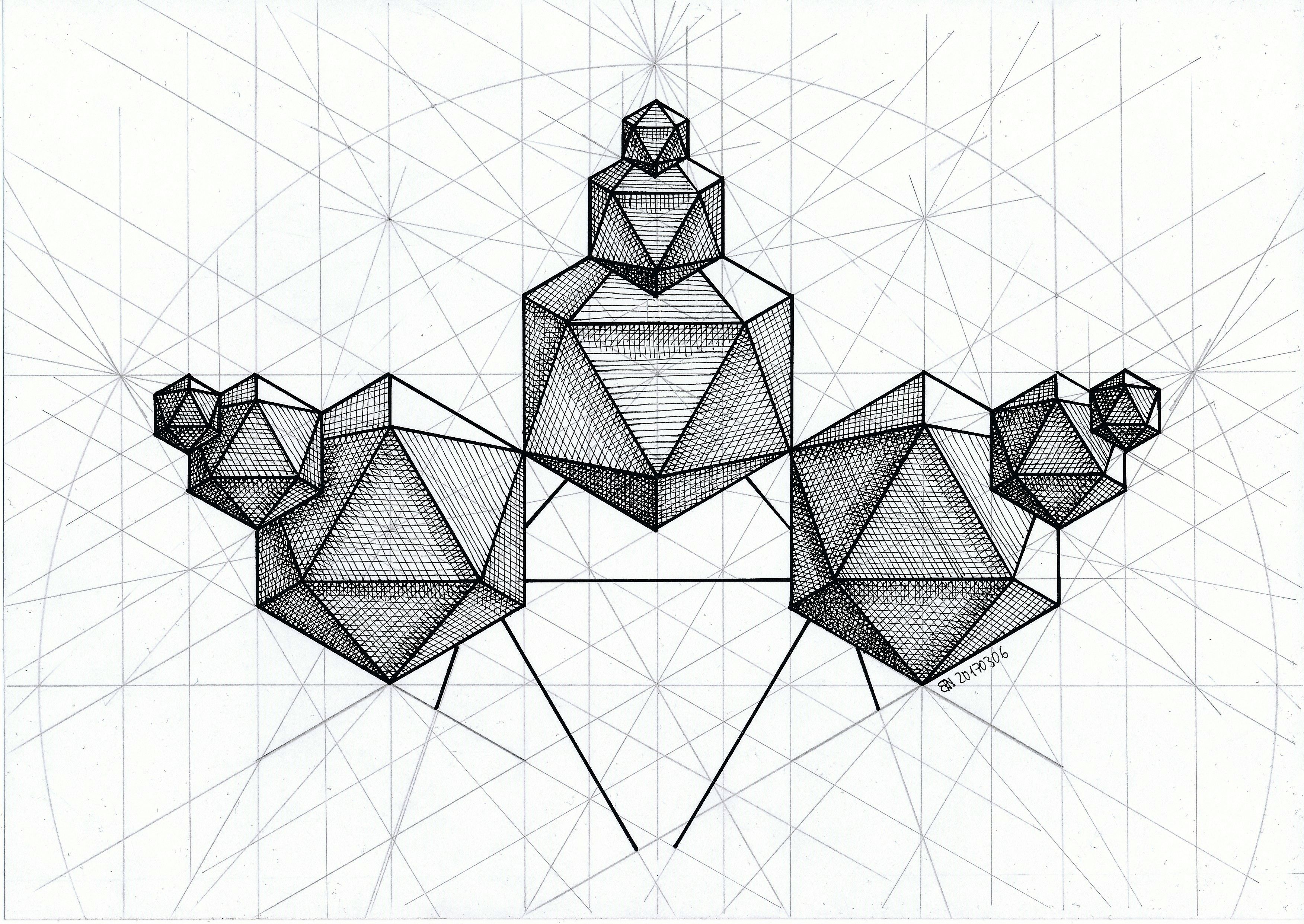 Solid Polyhedron Geometry Symmetry Mathart Regolo54