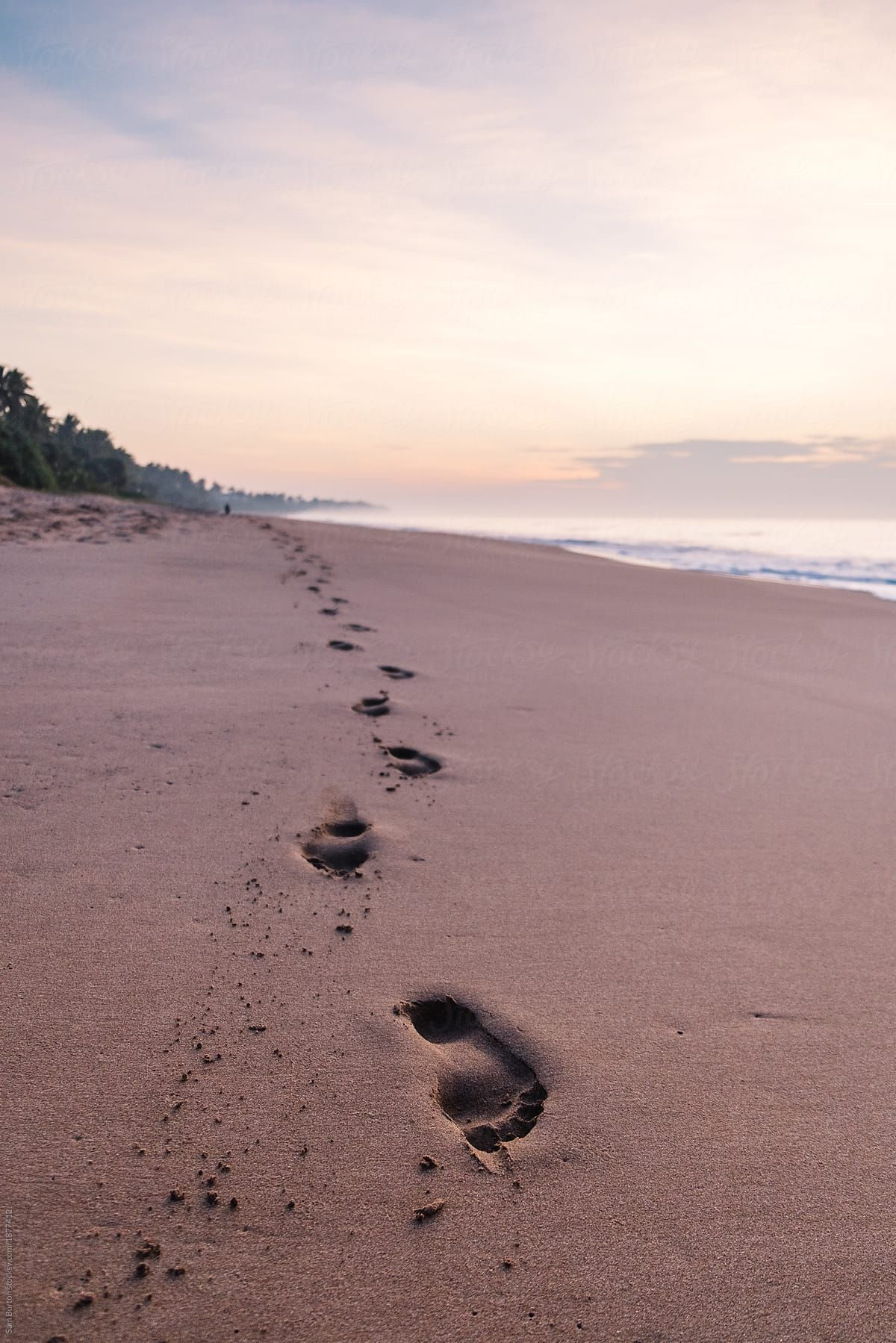 Footprints On The Beach   Stocksy United   Beach, The unit ...