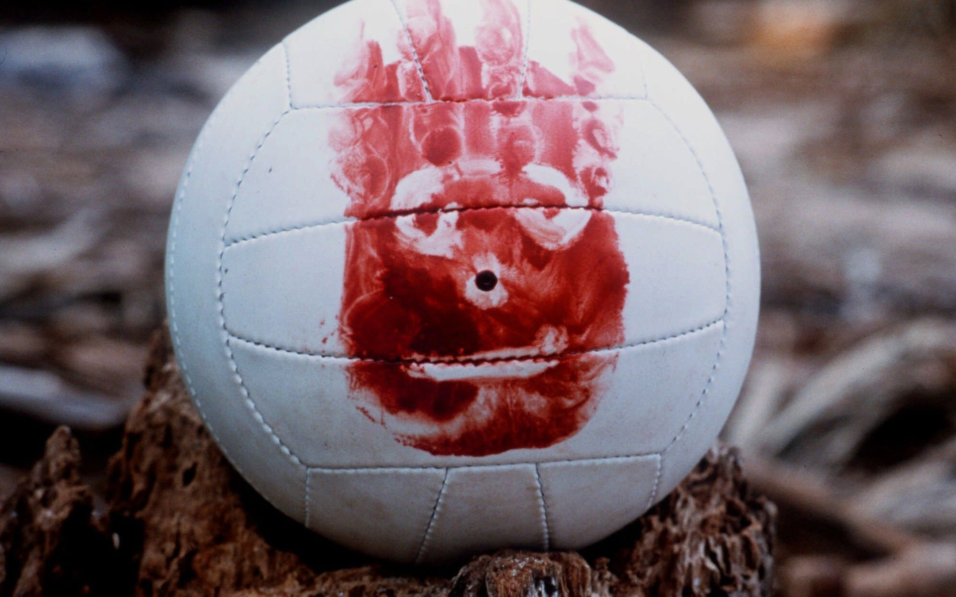 You Know The Line Tom Hanks Wilson Castaway Wilson Volleyball