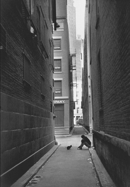 Henri Cartier-Bresson (born August 22, 1908 in Chanteloup-en-Brie, Seine-et-Marne, France - August 3, 2004) was a French photographer. He started with photog