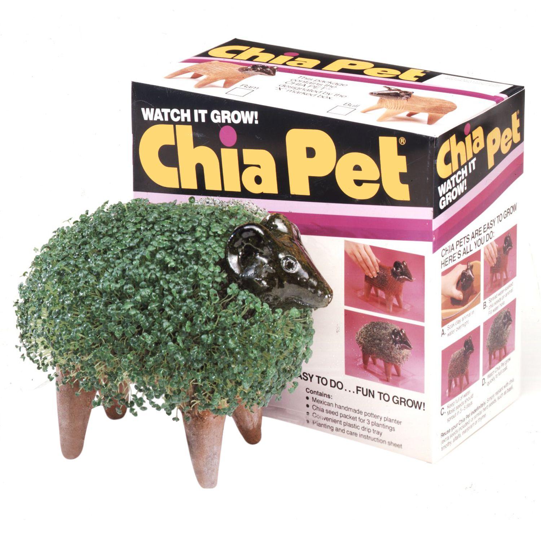 Chia Ram Chia Pet Garden Gifts Chia