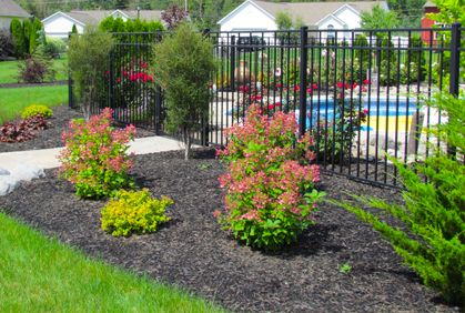 Perfect Pictures Of Best Landscaping Shrubs And Bushes For Front And Backyard  Designs. DIY Plans With Simple Landscape Design Ideas Using Most Popular Shrubs  Bushes ... Awesome Ideas