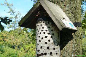 Insektenhotel richtig bauen - nicht nur Deko, sondern Hilfe für Nützlinge #vogelhausbauen