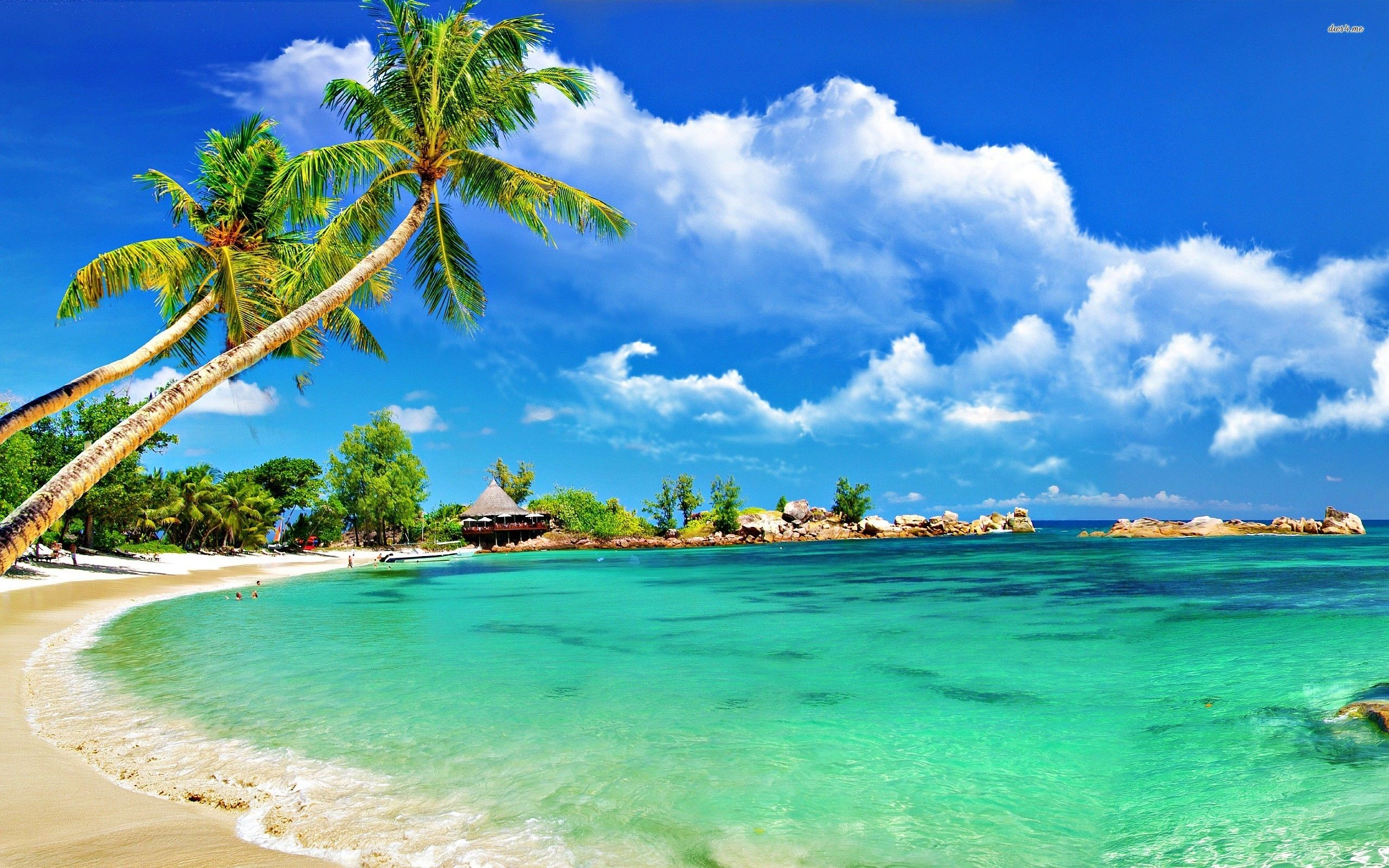 Tropical Island Beach Ambience Sound: Tropical Beaches Hd Background Wallpaper 34 HD Wallpapers