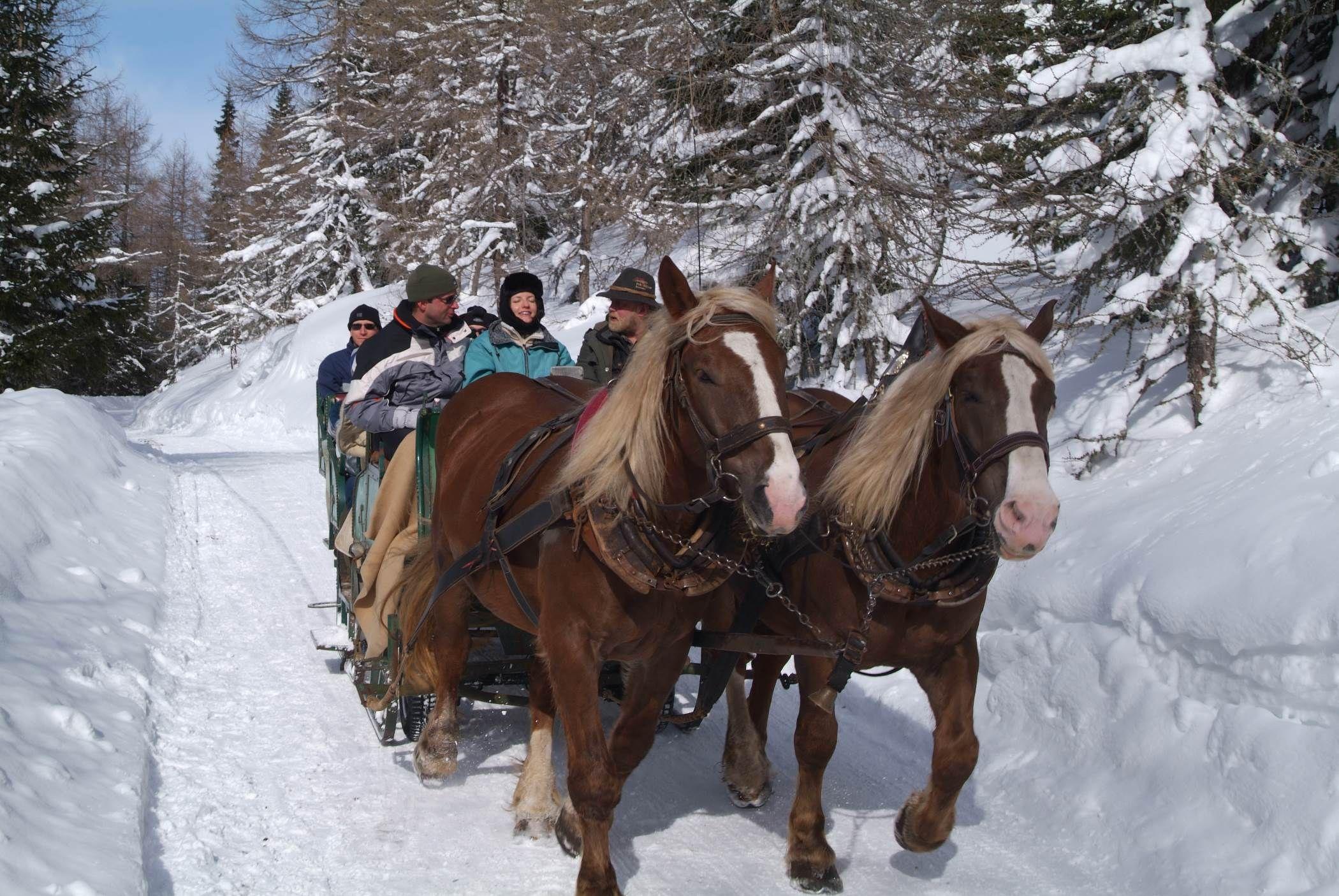 horse-drawn sleigh rides, Badkleinkirchheim, Austria