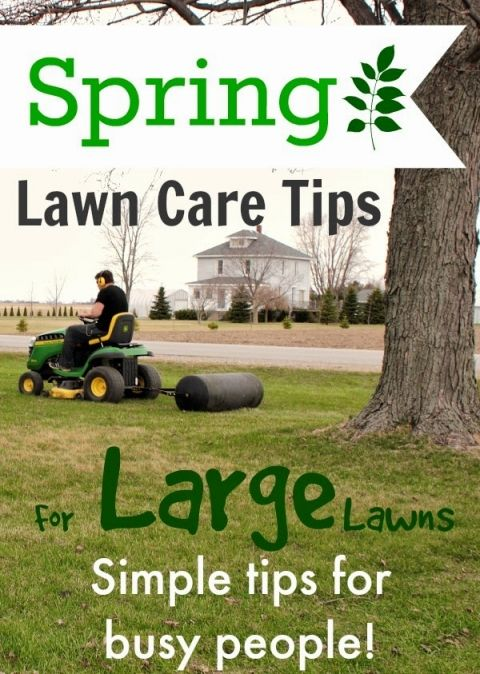 Spring Lawn Care Tips For Large Lawns The Creek Line House Spring Lawn Care Lawn Care Tips Lawn Care