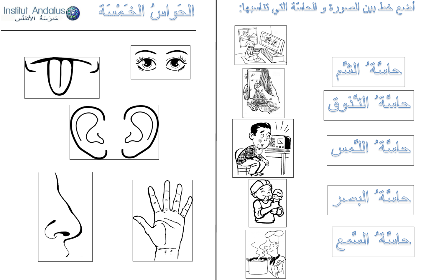 The Five Senses In Arabic Lesson Exercises P1 4