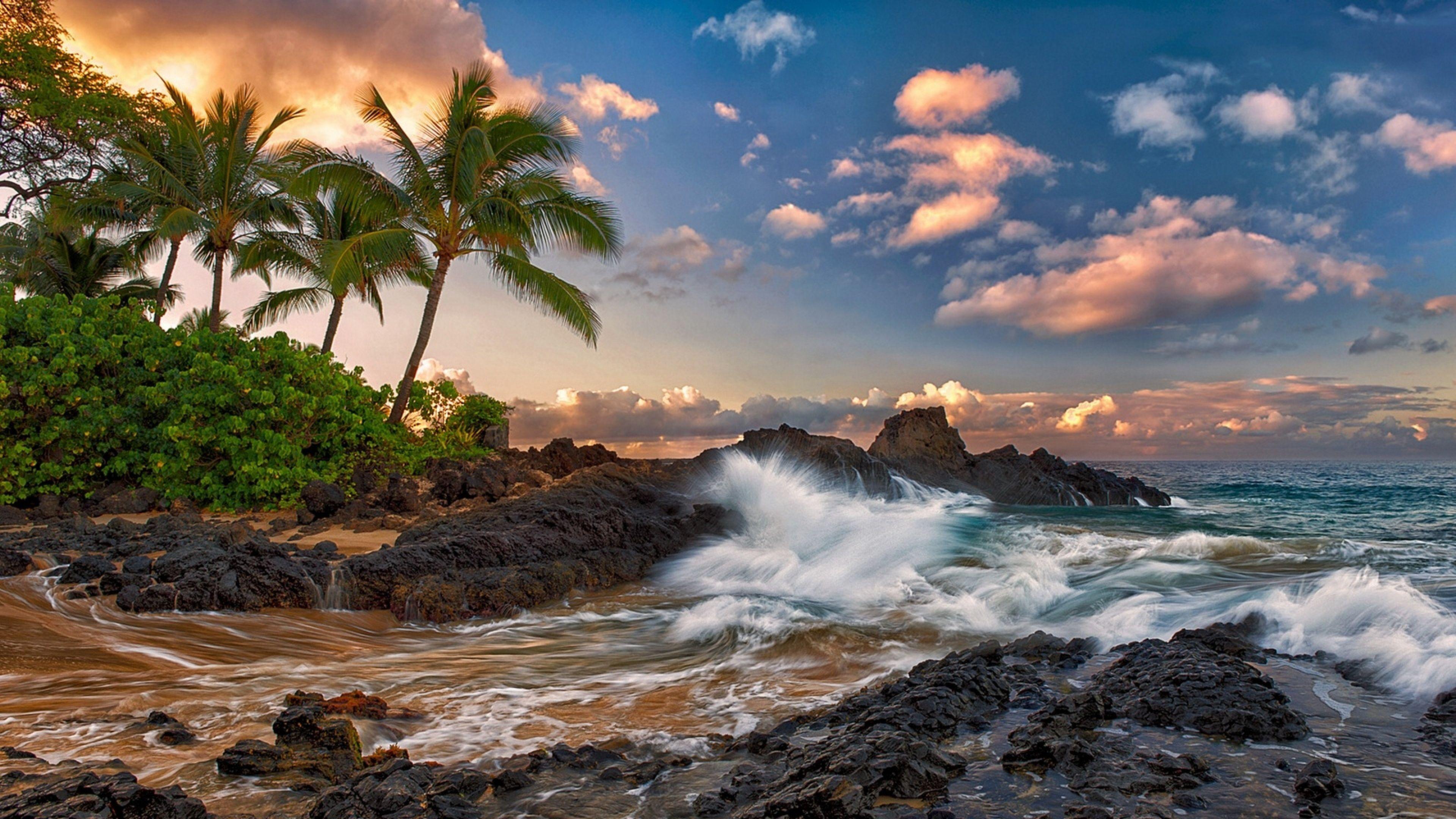 3840x2160 Wallpaper Maui Hawaii Pacific Ocean Rock Surf Rocks Palm Trees Clouds Tropical Coast Hawaii Landscape Maui Island Hawaii Ocean Images