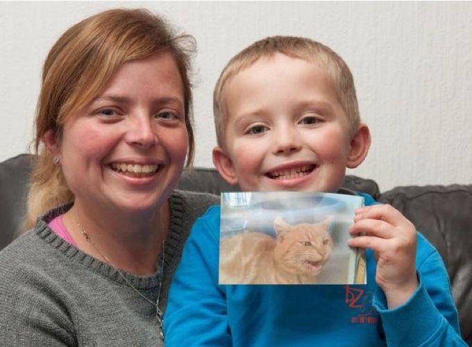 Un petit garçon de cinq ans a éclaté en sanglot en retrouvant son chat perdu depuis 18 mois dans un refuge.Une adoption dans un…