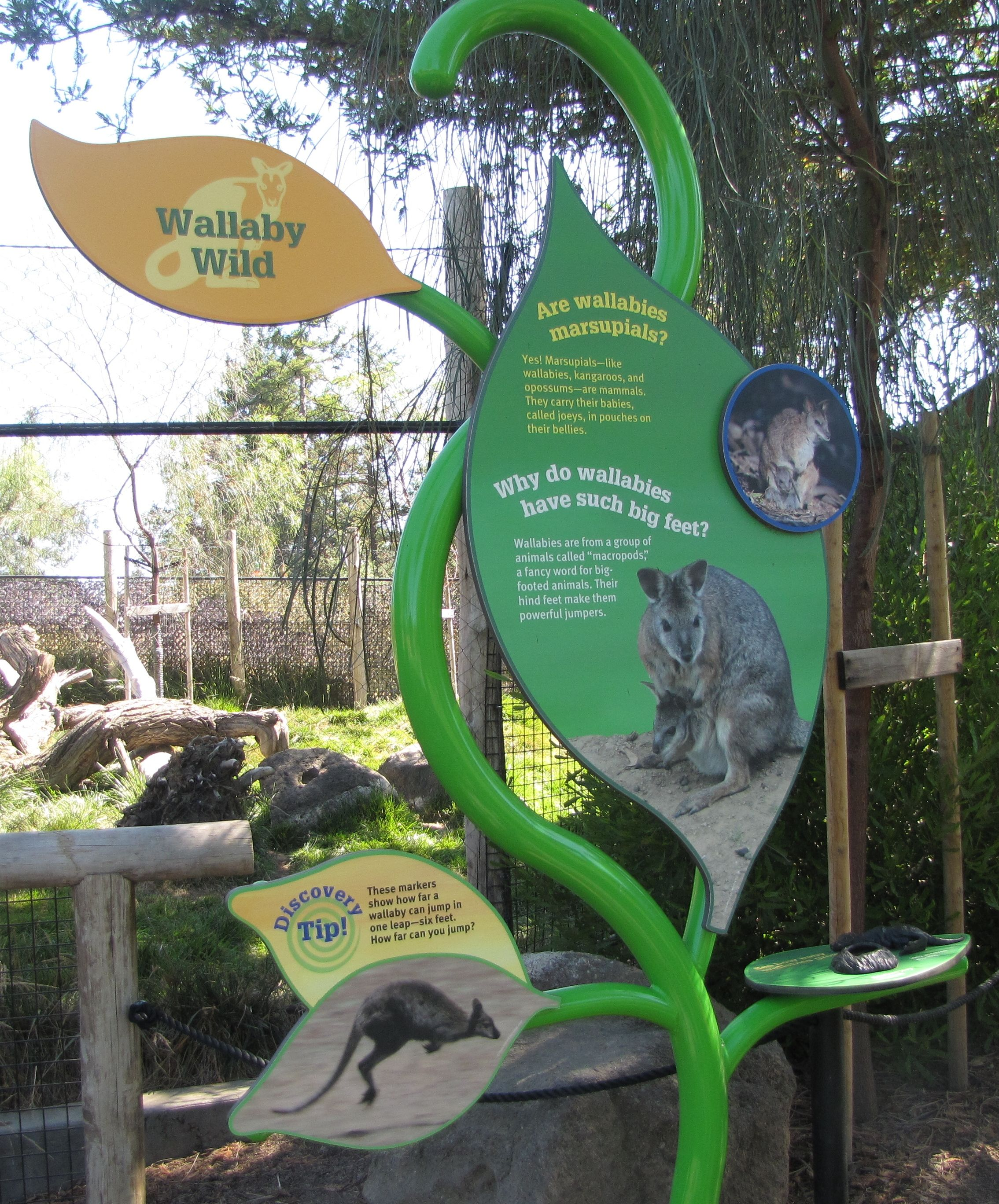 Happy Hollow Park & Zoo in San Jose, CA, visited in 2011. #TeamSanJose