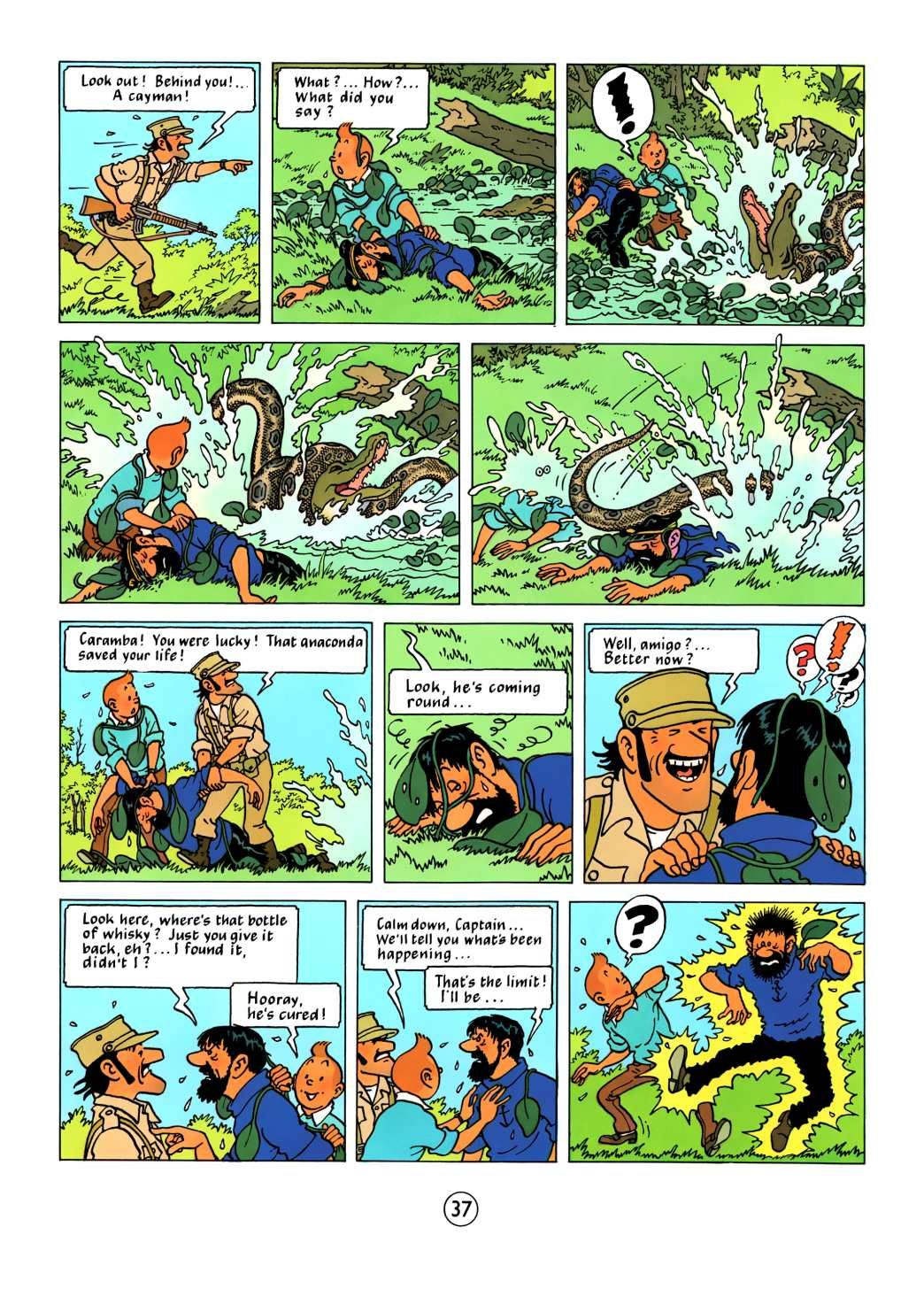 bd tintin pdf download