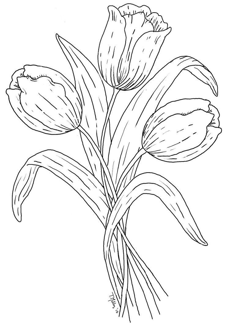 Dibujos Tulipanes Dibujo Tulipanes Para Colorear Pintar En Tela