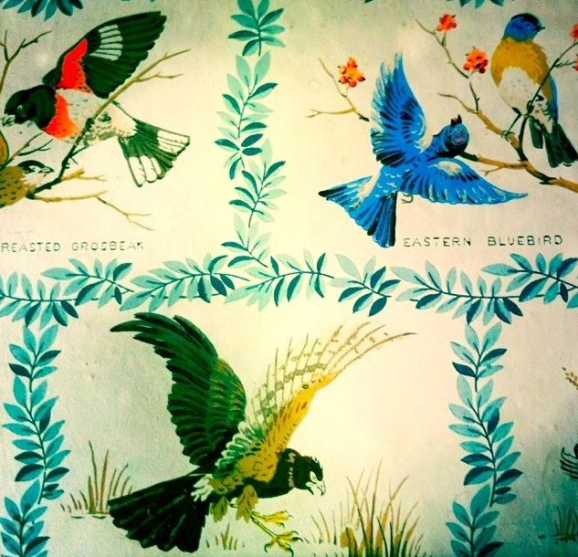 Spring Is Approaching 1960s Vintage Bird Wallpaper