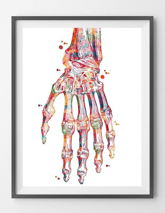 Hand Bones Anatomy Art Print Radiocarpal Joint Poster Wrist Joint ...