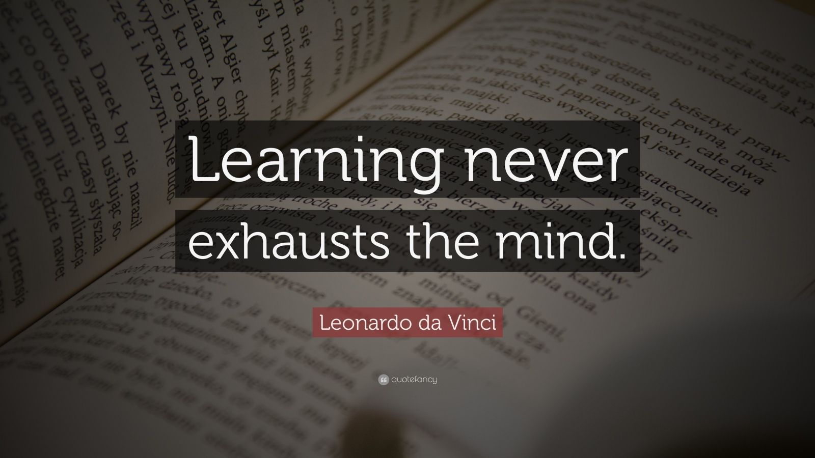 "Leonardo Da Vinci Quotes Fascinating Leonardo Da Vinci Quote ""Learning Never Exhausts The Mind"