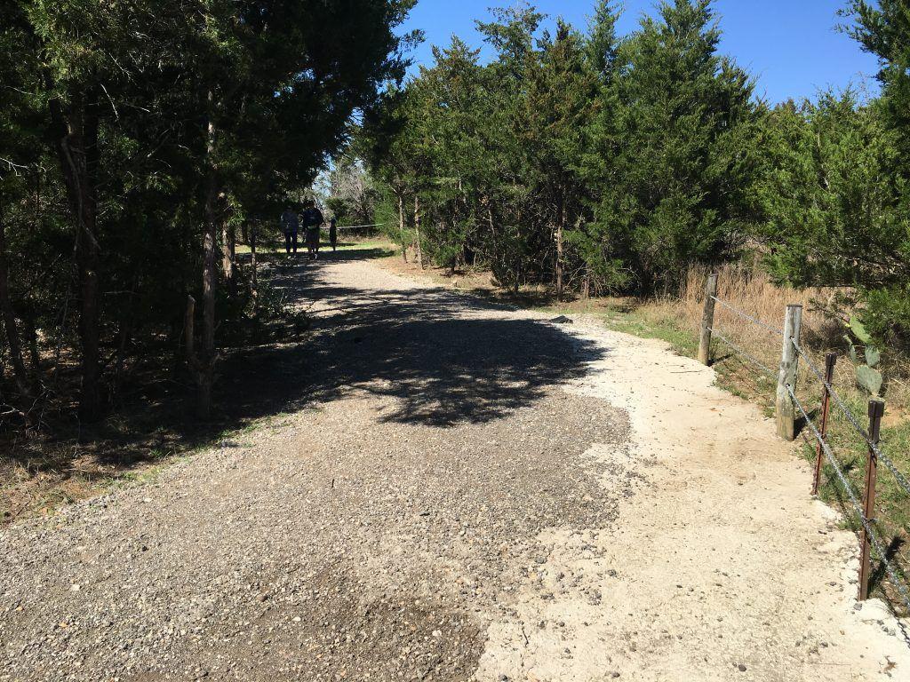 Nature trail at Dinosaur Park