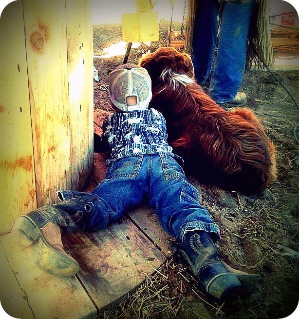 Watchin the calves @Rylee Becker