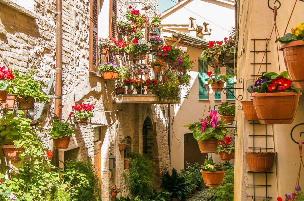 Floral Streets in Spello, Italy puzzle in Flowers jigsaw