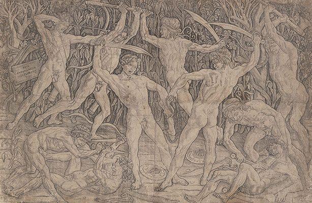Anatomia do Renascimento   Batalha de homens nus