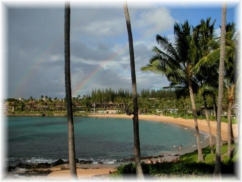 Hawaii This Is Napili Maui Best Beaches In Maui Maui Hawaii Vacation Hawaii Vacation
