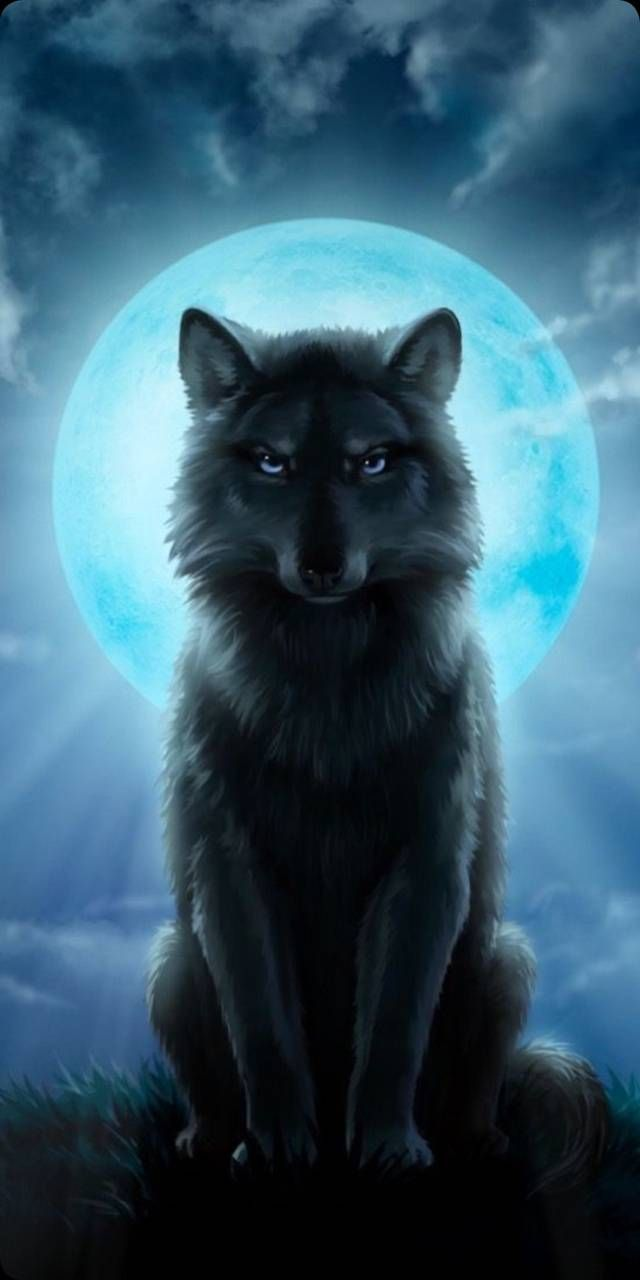 Photo of Luna azul wallpaper by Hardwell14 – a0 – Free on ZEDGE™