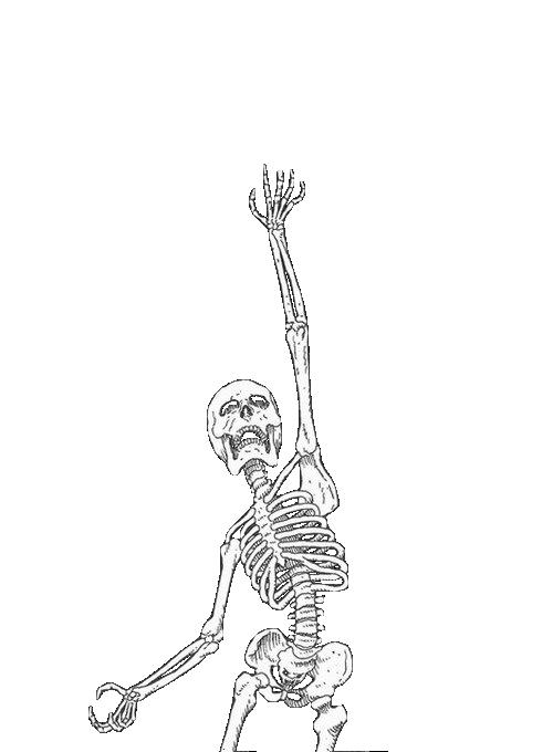 Welcome To The Atrocity Exhibition Skeleton Drawings Skeleton Artwork Skeleton Art