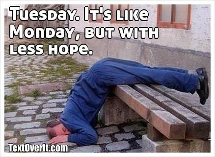 Tuesday. It's like Monday, but with   less hope.