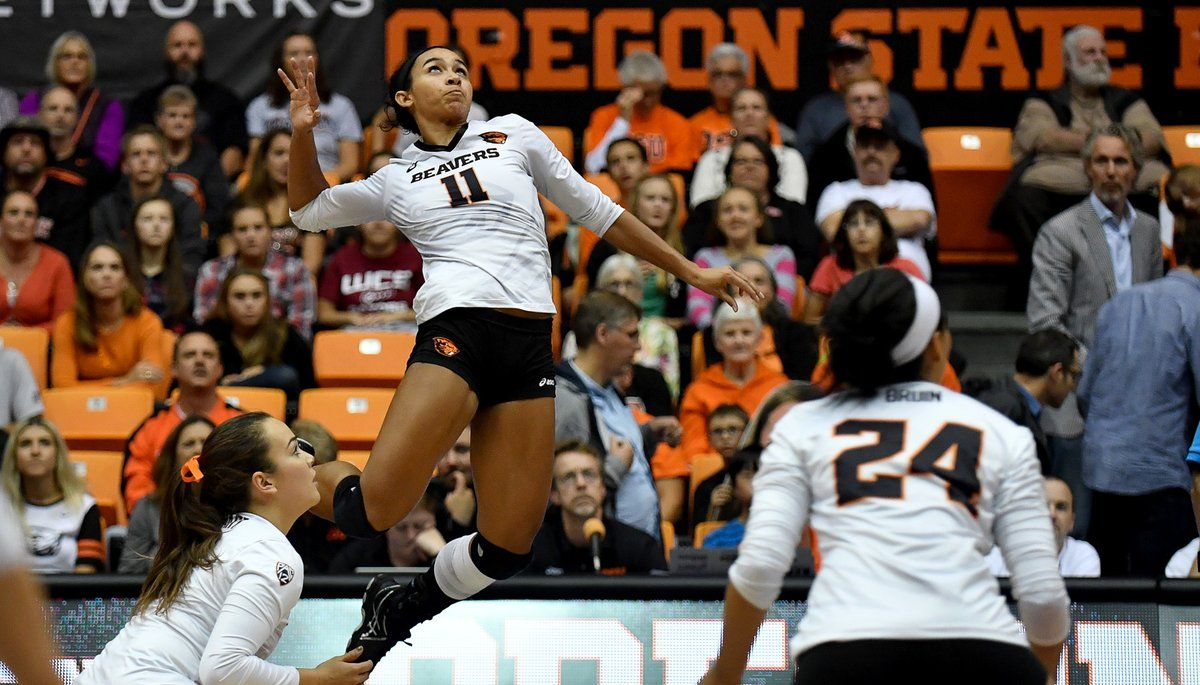 Oregon State Vball Beavervball Twitter Oregon State Oregon State University Writing Majors
