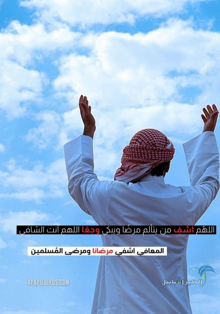 دعاء اللهم اشفي مرضانا ومرضى المسلمين مكتوب وبالصور تصاميم جديدة الطير الأبابيل Art Pandora Screenshot Screenshots