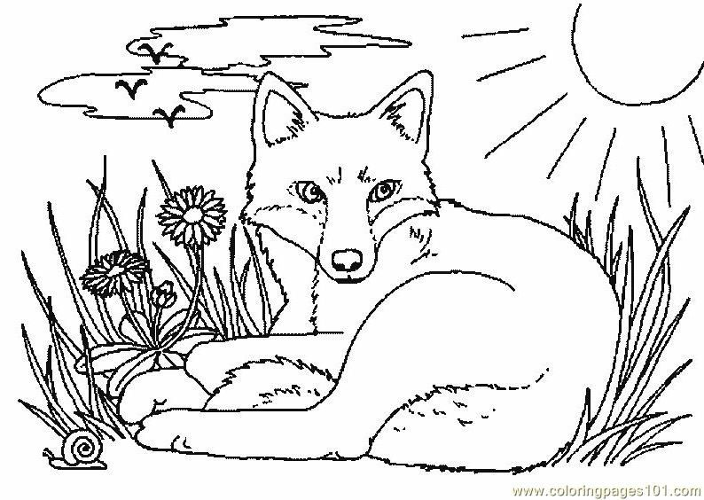 Fox Coloring Page Free Printable Coloring Pages Fox Coloring Page Horse Coloring Pages Coloring Pages