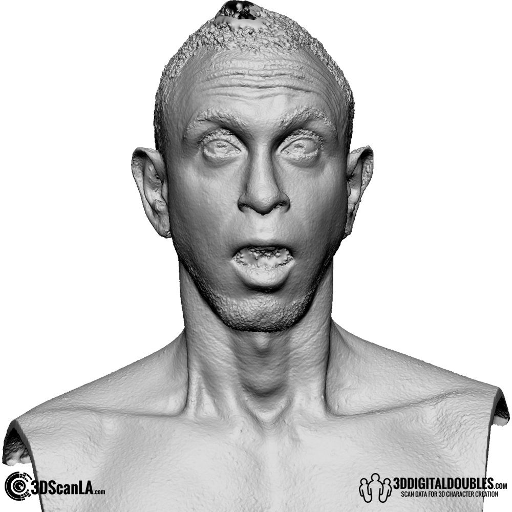 3D Head and Body Scanning for 3D Character Design | 3D Head Scan, 16 ...