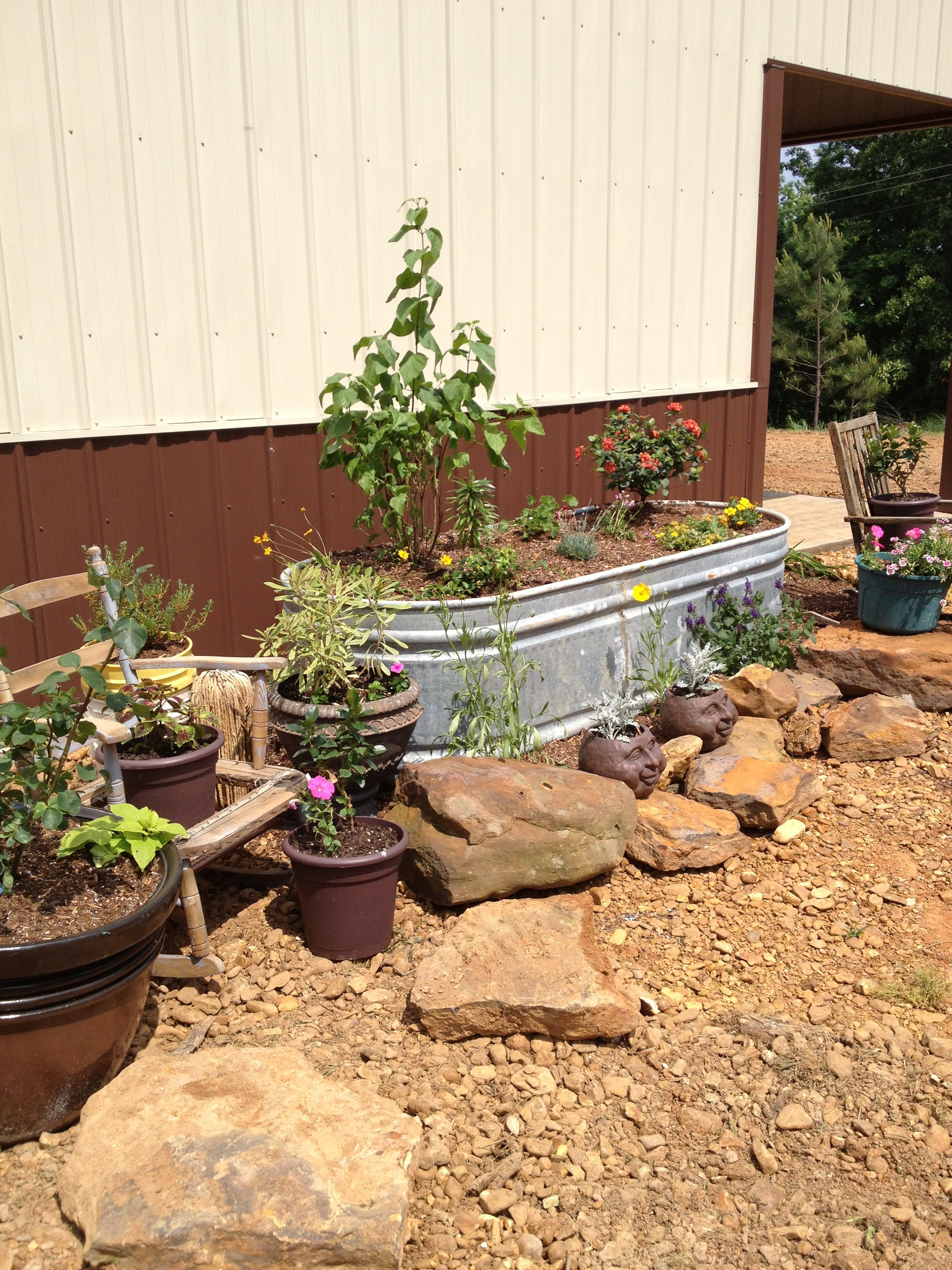 Rock yard so we are using containers love my flower garden