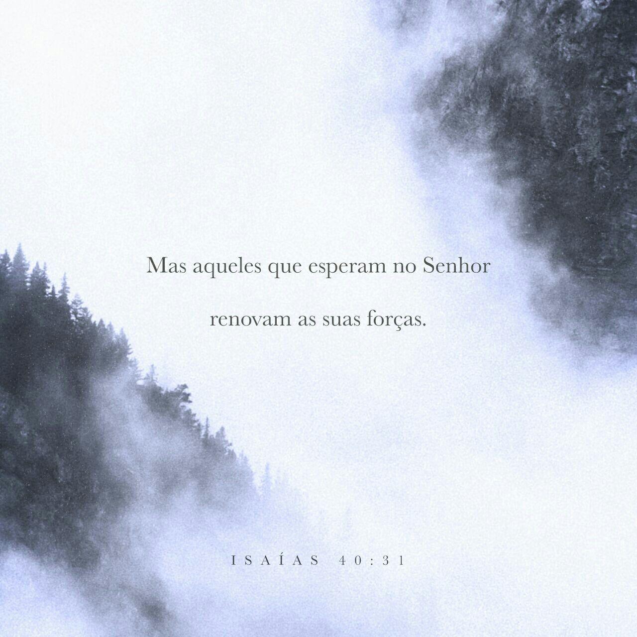mas aqueles que esperam no Senhor renovam as suas forças. Voam alto como águias; correm e não ficam exaustos, andam e não se cansam. Isaías 40:31 NVI http://bible.com/129/isa.40.31.NVI