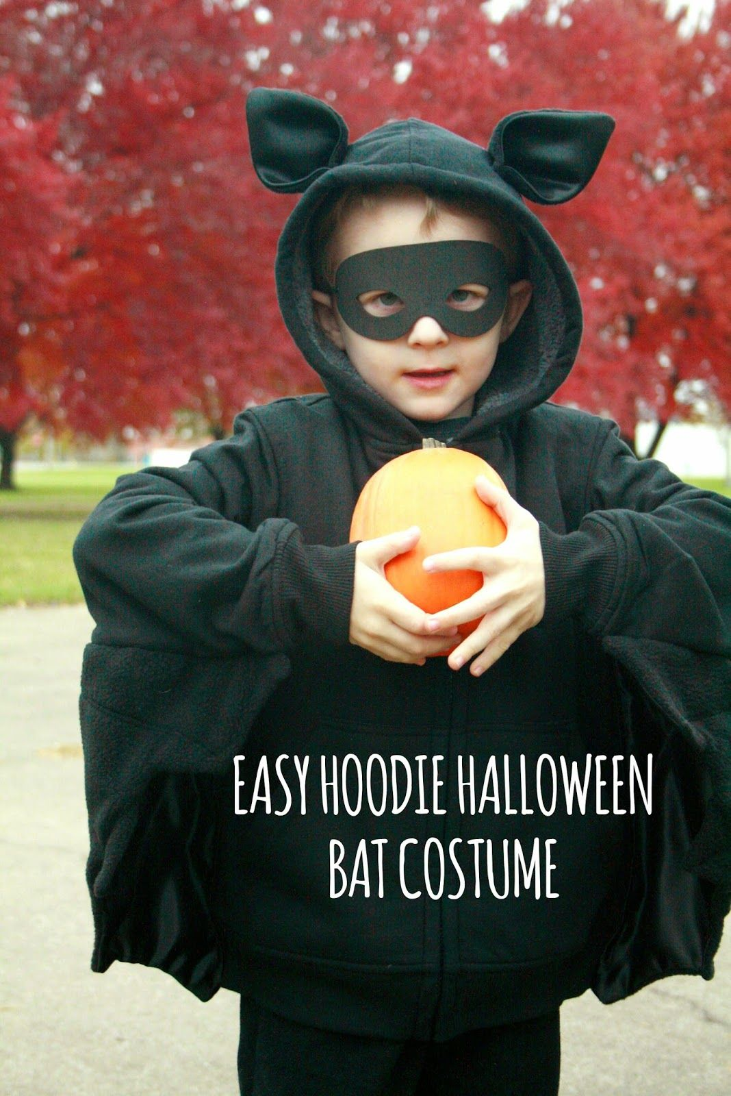 This Halloween Riley ask to be a bat. Not Batman, but an actual bat. Of course there are no bat costumes at the stores, so I decided to...