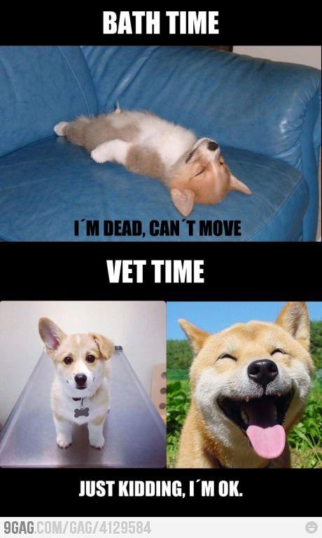 Hahahaha