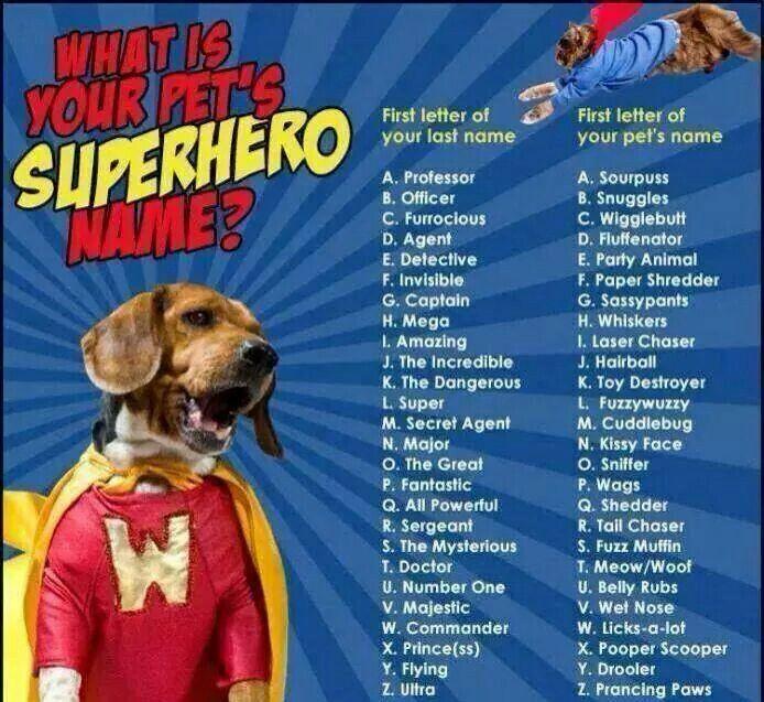 Cute Superhero Names Funny Name Generator Funny Names
