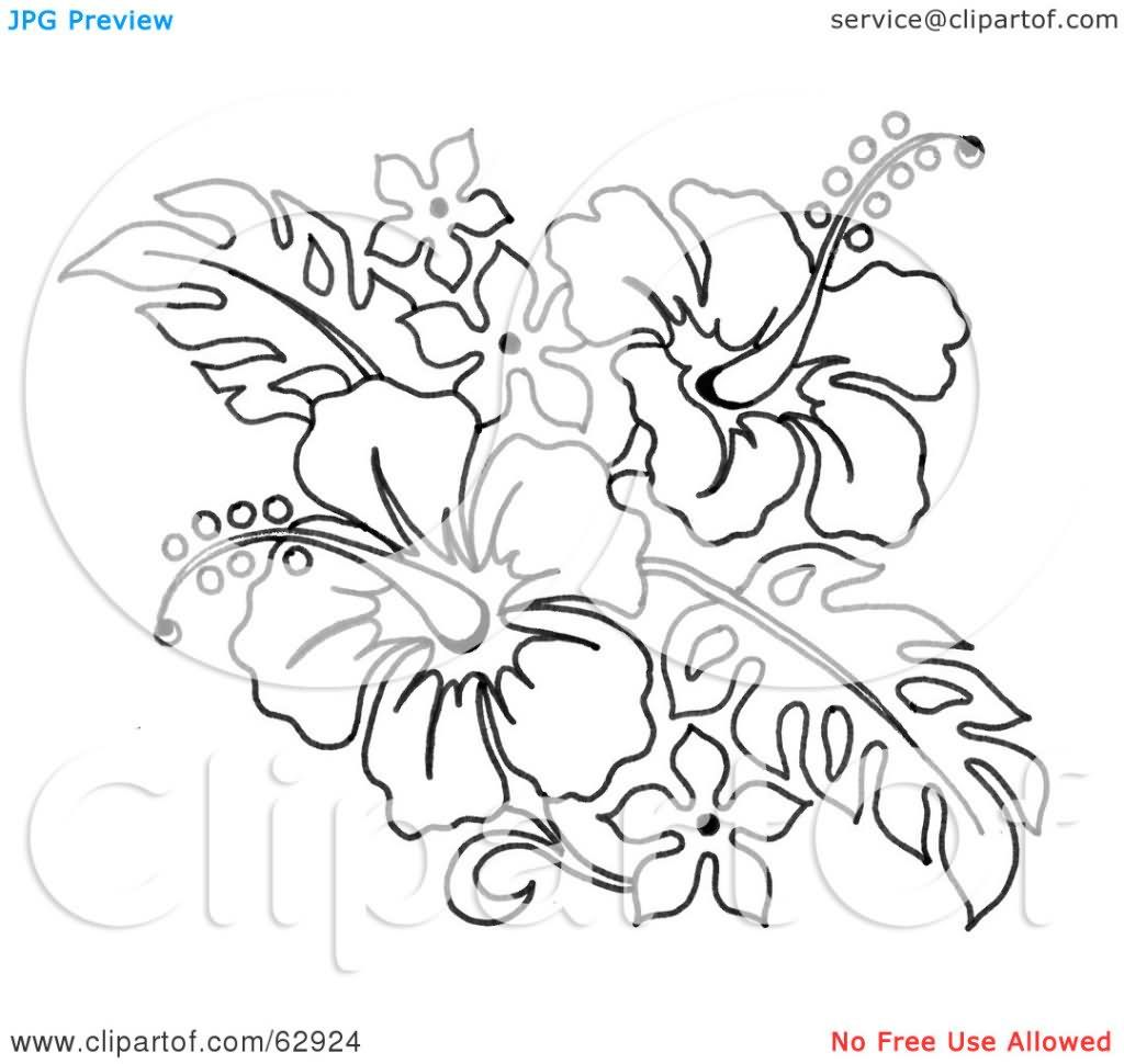 Image result for flowers outlined bouquets pinterest hibiscus image result for flowers outlined flower tattoo designs flower tattoos colorful pictures flower izmirmasajfo