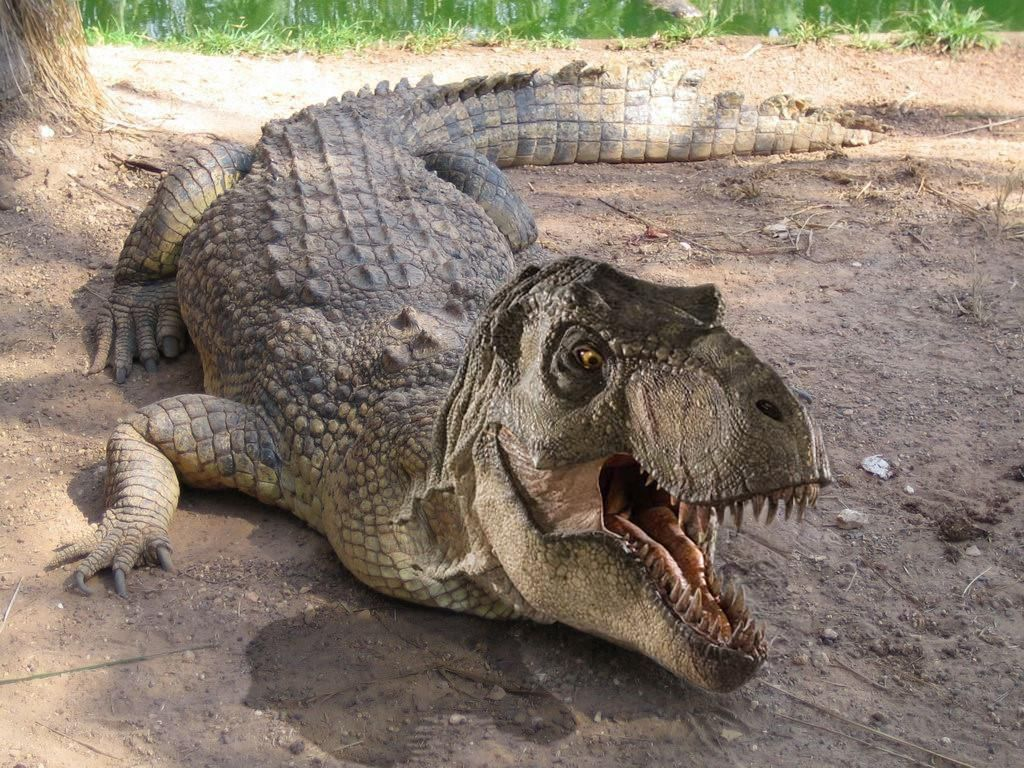 Tyrannosaurus-crocodile hybrid   Cool animal hybrids ...