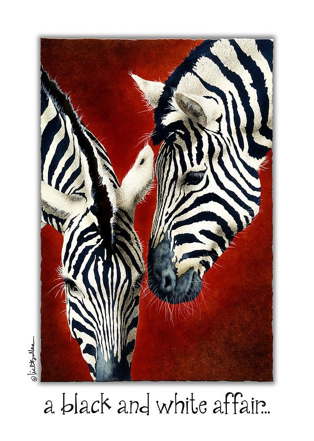A Black And White Affair... Greeting Card for Sale by Will Bullas ...