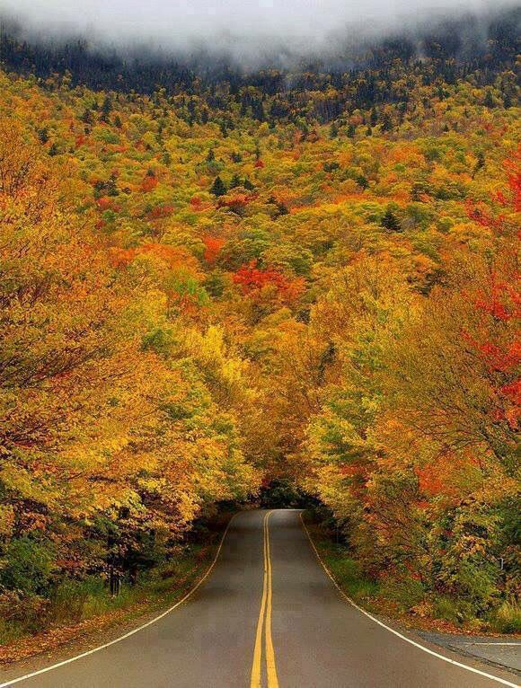 New England towns