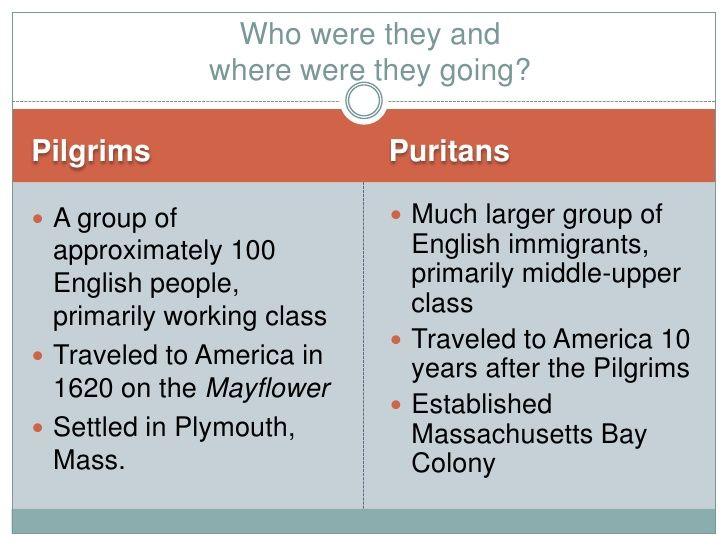 pilgrims vs puritans venn diagram rv solar panel installation wiring and teacher stuff